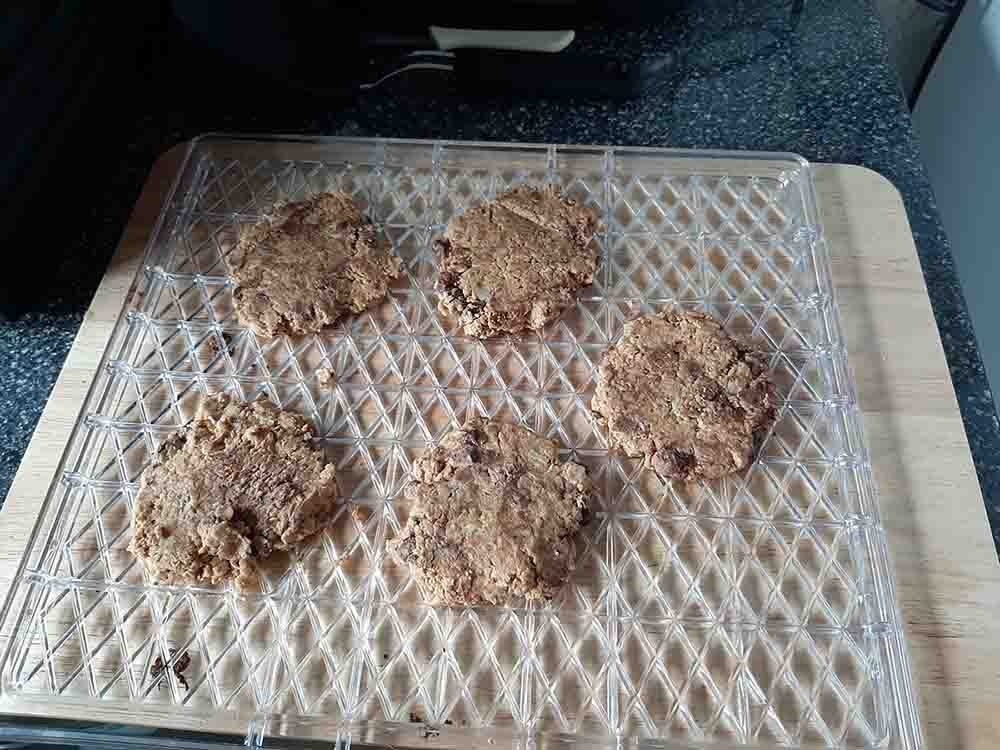 Cookies on a tray before being cooked in the Sunbeam Food Lab Electronic Dehydrator.