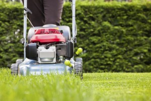 Spring Clean Your Home - Lawn and Garden