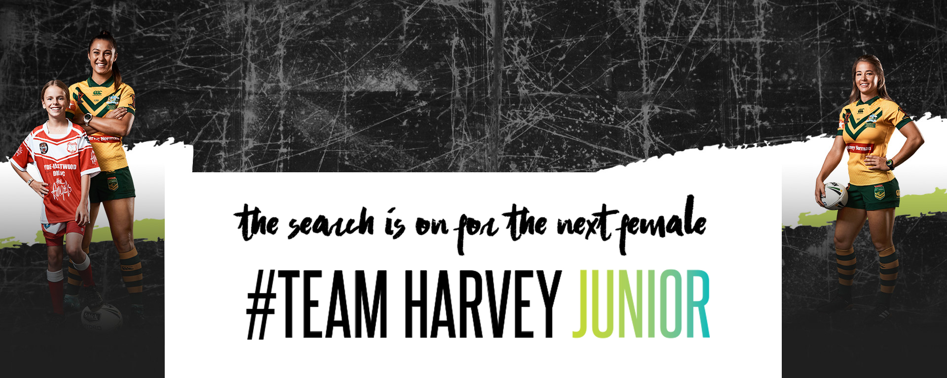 Team Harvey