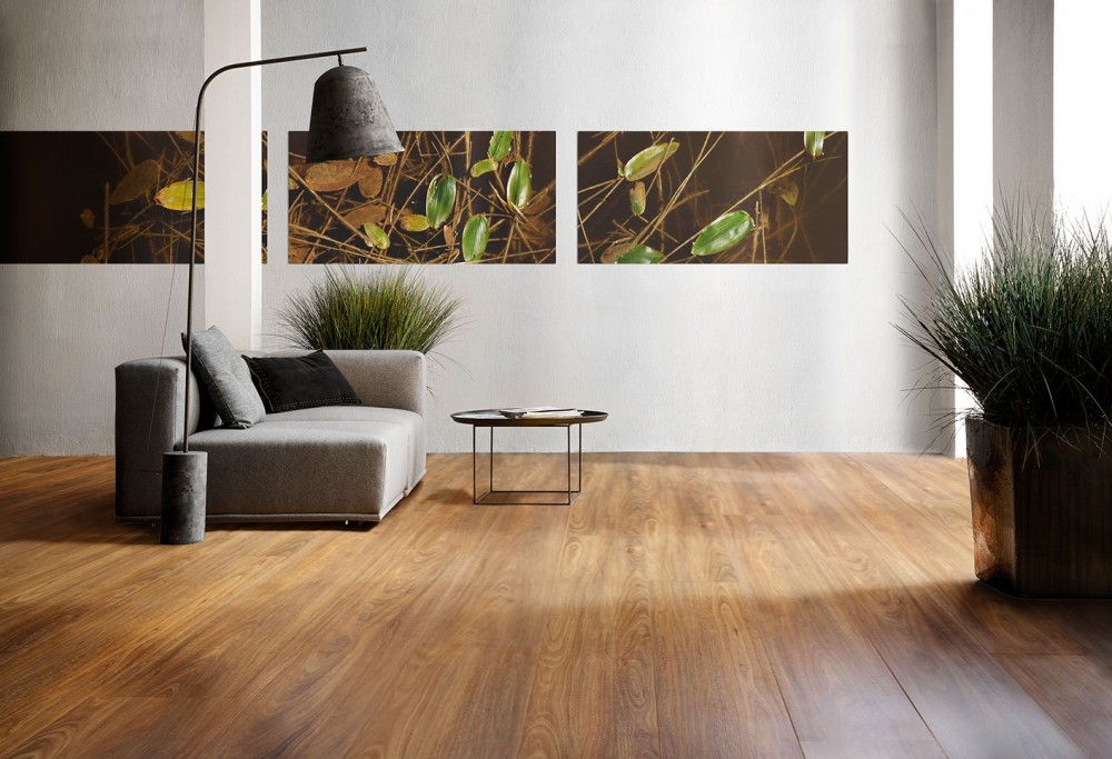 Timber-Impressions-Eucalypt