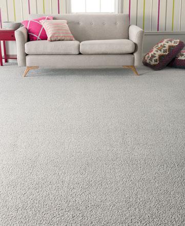 SmartStrand Forever Clean 'Classic' Carpet
